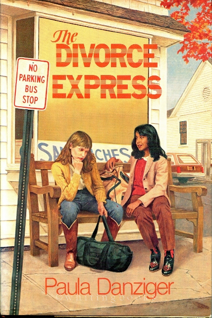 Image for The Divorce Express