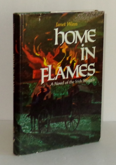Image for Home in Flames: A Novel of the Irish Struggle