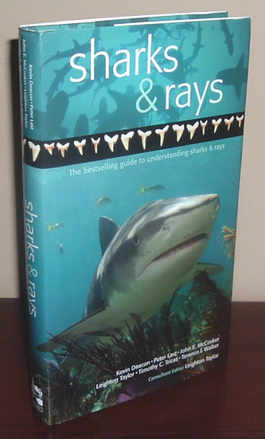 Image for A Guide to Sharks & Rays