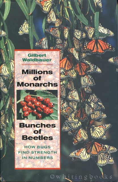 Image for Millions of Monarchs, Bunches of Beetles: How Bugs Find Strength in Numbers