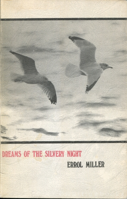 Image for Dreams of the Silvery Night