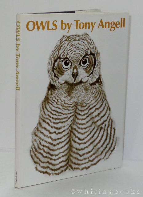 Image for Owls