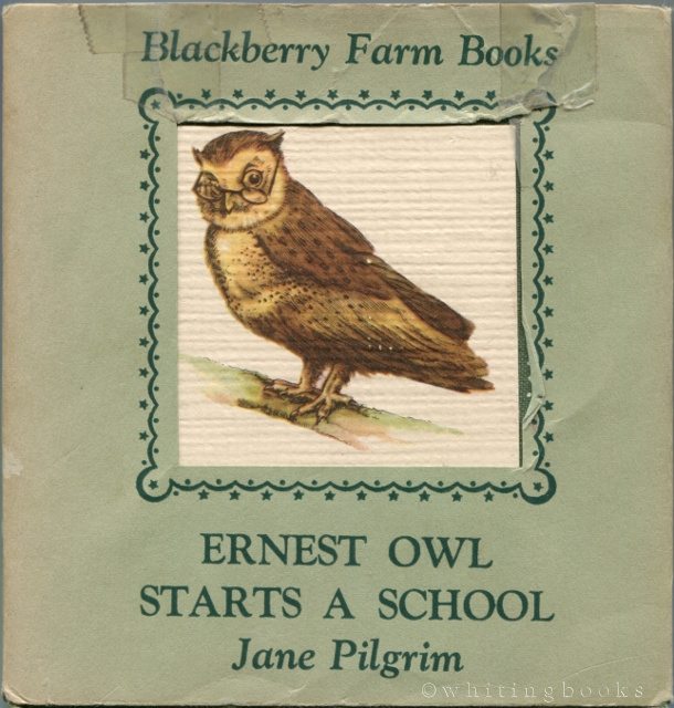Image for Ernest Owl Starts a School