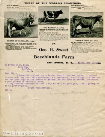 Image for 1904 Letter on Geo H Sweet Beechlands Farm Letterhead, Aurora, New York, Featuring Champion Jersey Cows