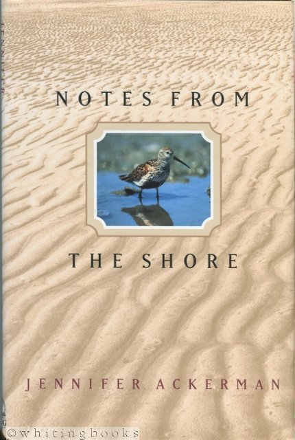 Image for Notes from the Shore