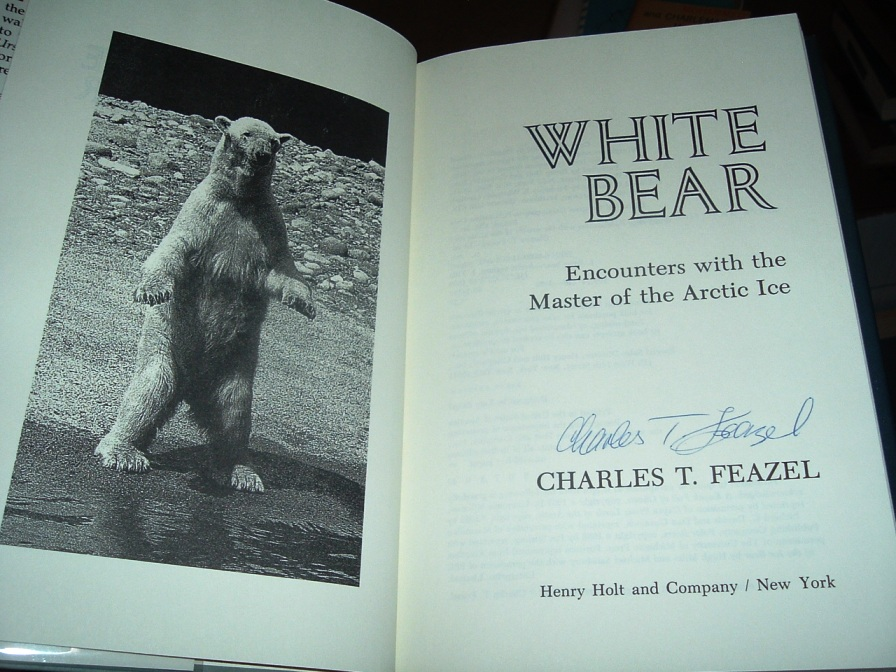 Image for White Bear : Encounters with the Master of the Arctic Ice